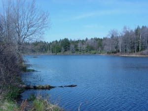 Kees Lake