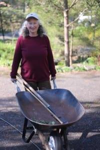 Carolyn Summers with wheelbarrow